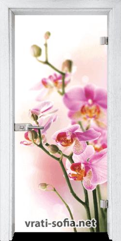 Стъклена интериорна врата Print G 13-2