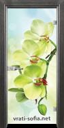 Стъклена интериорна врата Print G 13-3