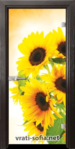 тъклена интериорна врата Print G 13-4
