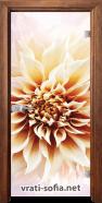 Стъклена интериорна врата Print G 13-5